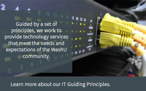 Image of IT guiding principles