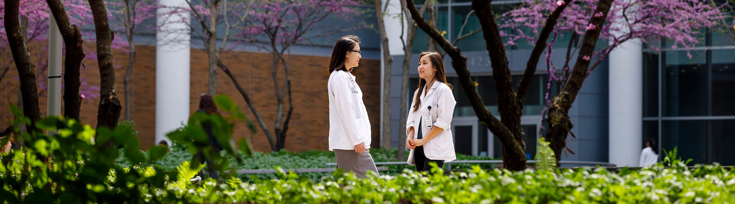 Medical students visit in the Hope Plaza at the center of the Medical Campus