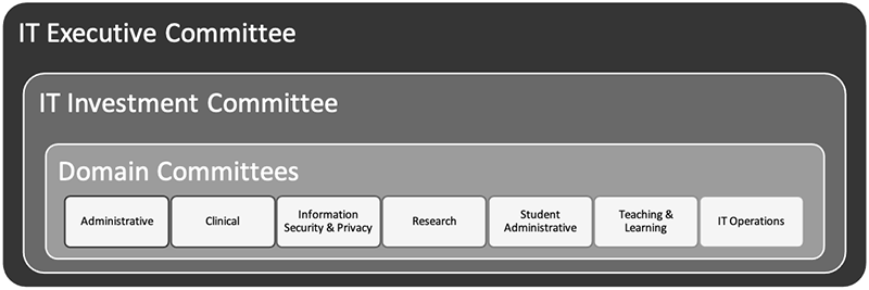 IT Governance Domain Structure